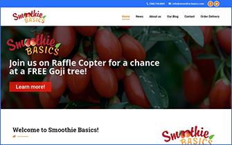 Smoothie Basics